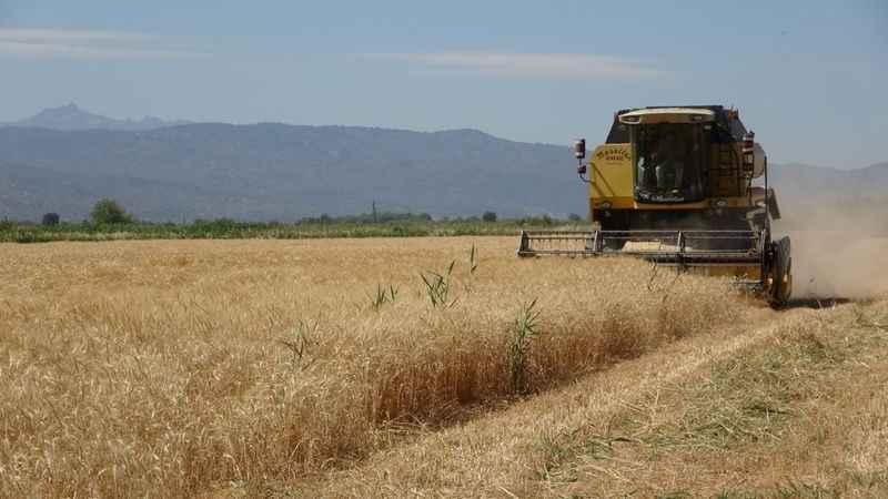Germencik Belediyesi'nden tarım hamlesi