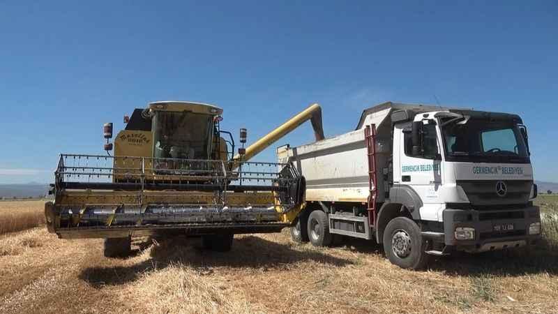 Atıl arazide üretilen buğdayla personelin ikramiyesi ödendi