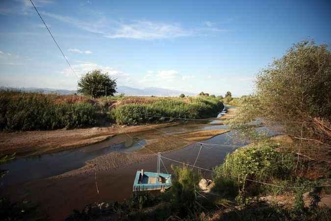 Aydın'da üretici, kuraklığın etkilerini alternatif ürünlerle azaltmaya çalışıyor