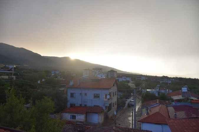 Fırtına Karacasu'da ağacı yerinden söktü