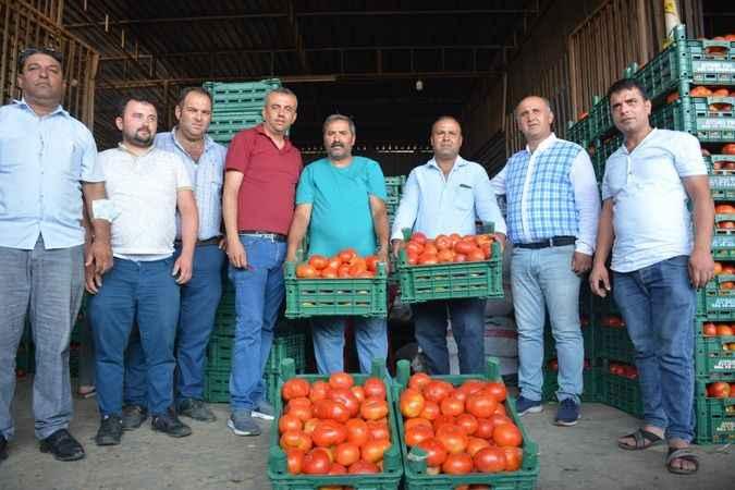 'Türkiye sofrasında, Acarlar domatesi'