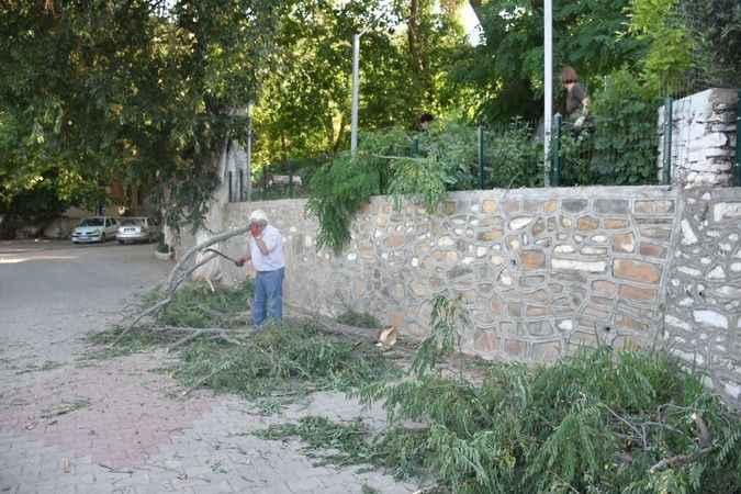 Vatandaşlar fırtınanın tahribatını temizledi