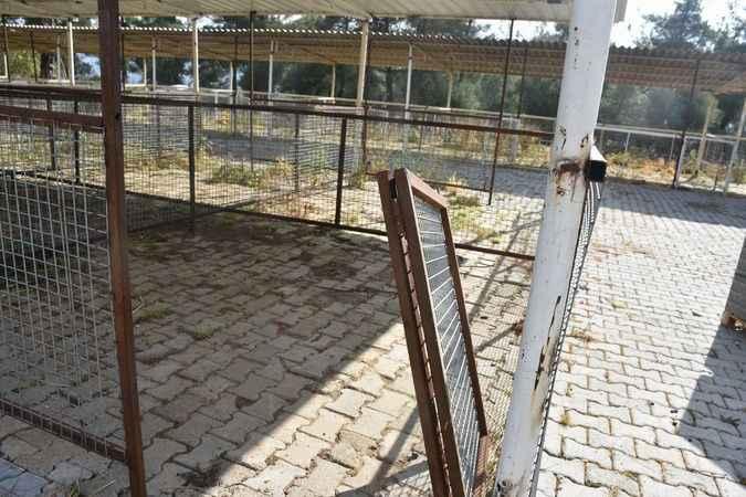 Belediyeye ait hayvan pazarının kapıları kayboldu