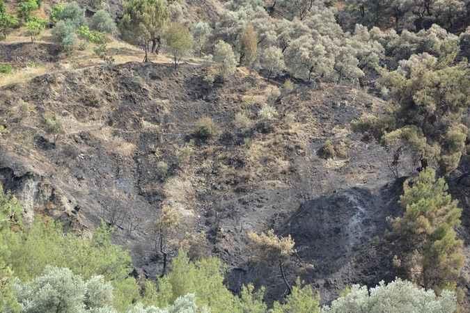 Aydın'da hasar tespit çalışması başlatıldı