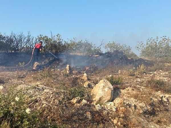 Didim'de yangınlar büyümeden söndürüldü