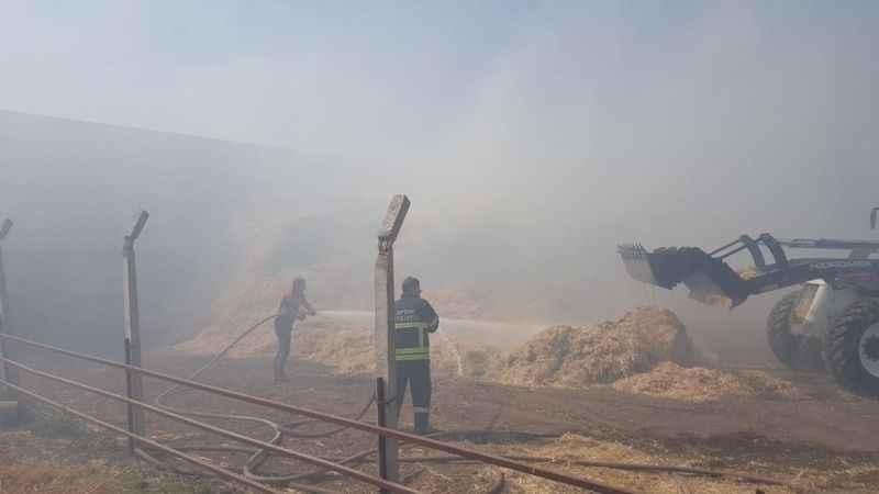 Aydın'da yangınlara anında müdahale