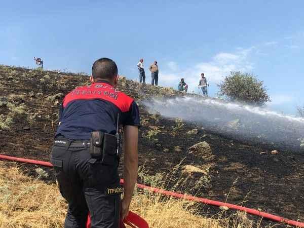 Aydın'daki yangın söndürüldü