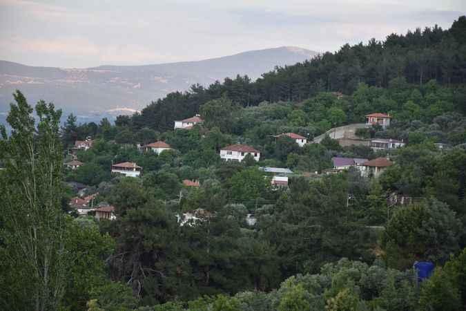 Bayram, Aydın'daki cennette yaşandı
