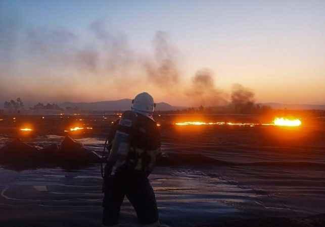 Aydın BŞB itfaiyesi gün boyu yangınlarla mücadele etti