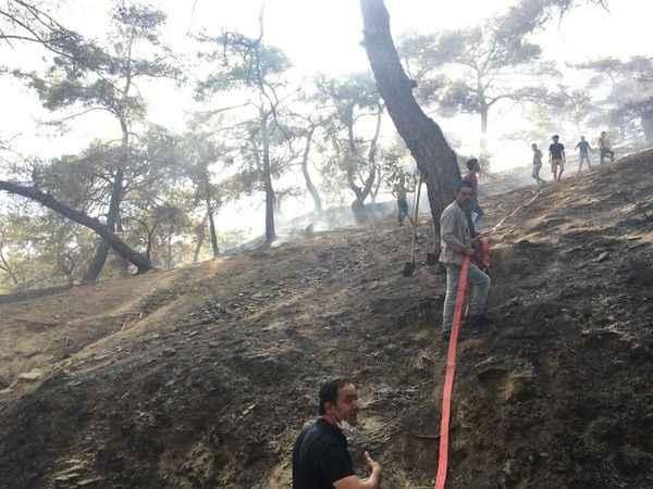 Buharkent ve Kuyucak'taki yangın kontrol altına alındı
