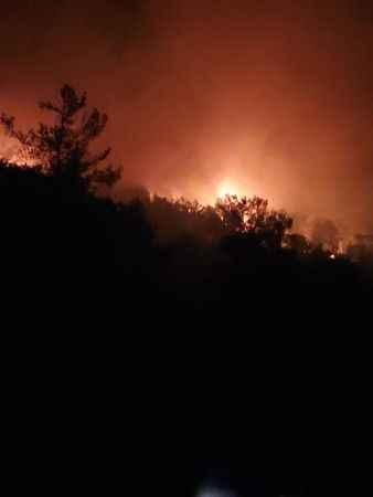 Kıyıkışlacık'taki yangın Didim'i korkuttu