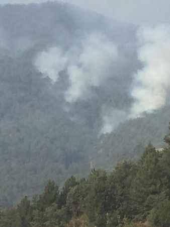 Karacasu'daki yangında hava desteği başladı