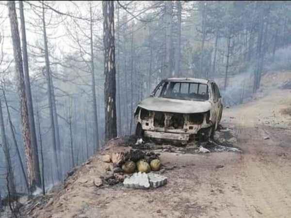 Karacasu'daki yangında ormana ait araç yandı