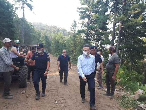 Aydın Valisi Aksoy yangında 450 hektar alanın zarar gördüğünü açıkladı