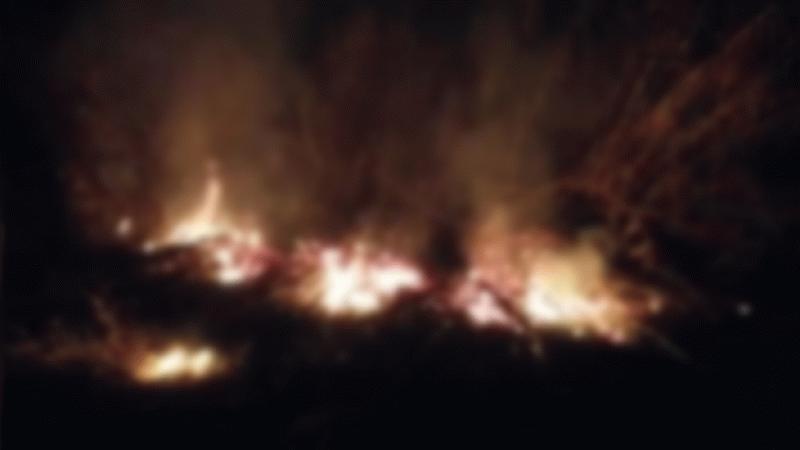 Nazilli'deki yangın büyümeden söndürüldü