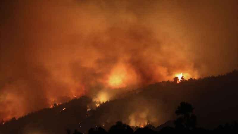 Karacasu ve Bozdağan'daki orman yangınları kontrol altına alındı