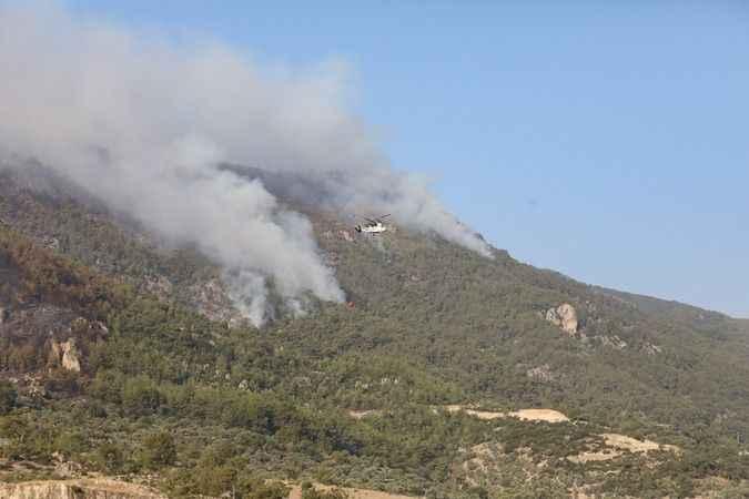 Aydın'daki yangında son durum