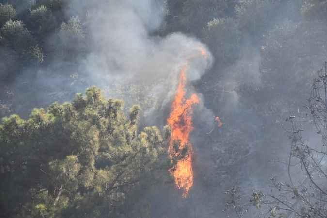 Karacasu Bahçeköy'deki yangın kontrol altına alındı