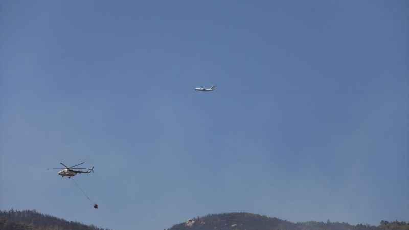 Aydın'daki orman yangınını söndürme çalışmaları sürüyor