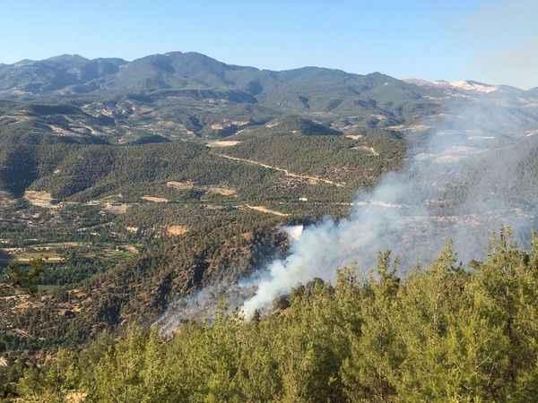 Aydın'ın Bozdoğan ilçesinde orman yangını çıktı