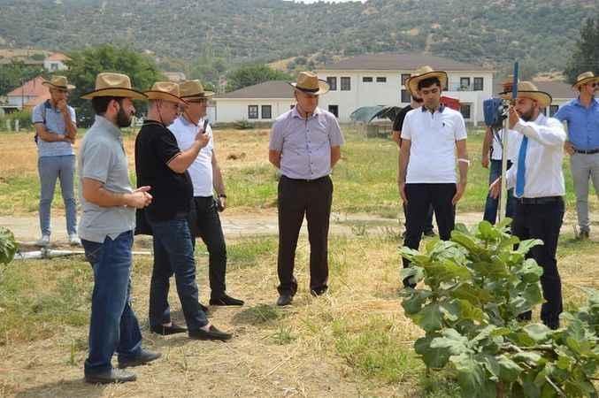 Azeri heyet, Aydın tarımını inceledi