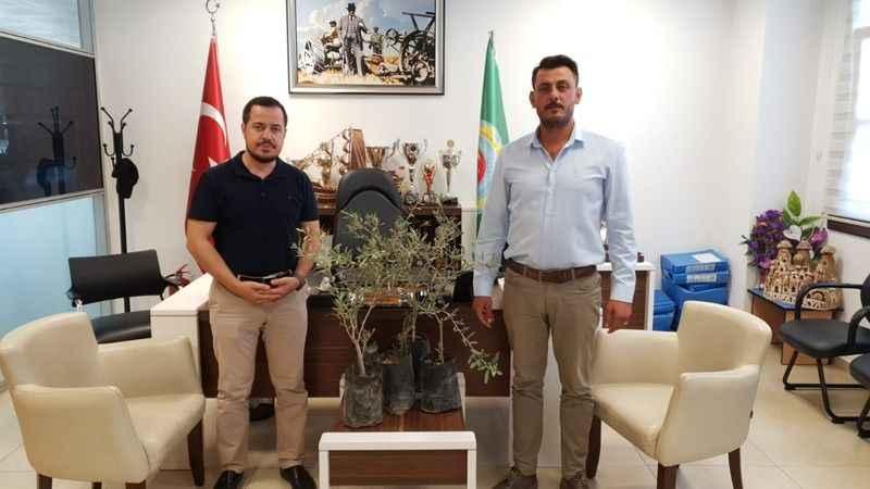 Germencik Ziraat Odası'ndan yangın bölgeleri için zeytin fidanı bağış kampanyası