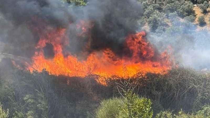 Germencik'te yangın büyümeden söndürüldü