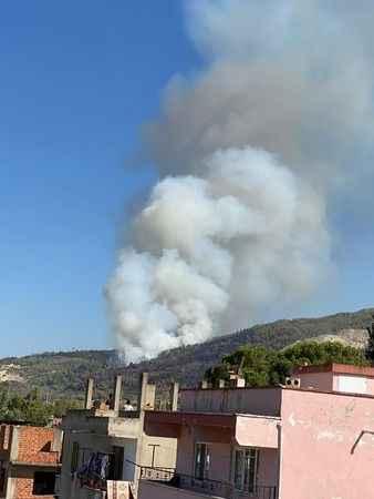 Aydın'da ormanlık alanda yangın çıktı