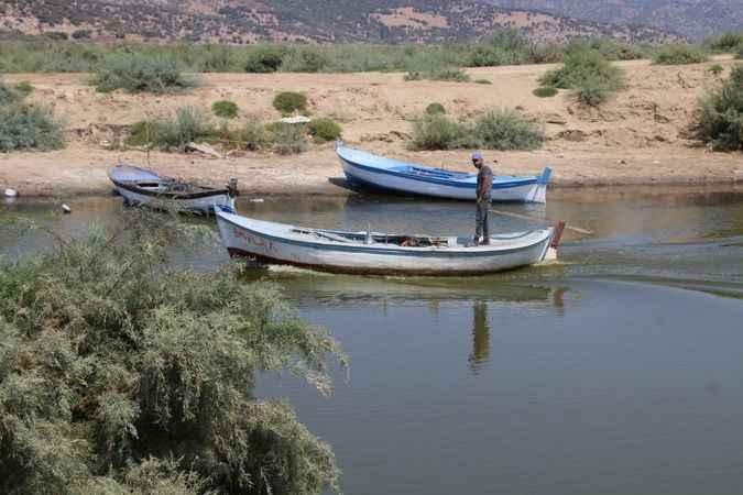 Aydın BŞB'nin Bafa Gölü'nde yaptığı çalışma canlıların hayatını kurtardı