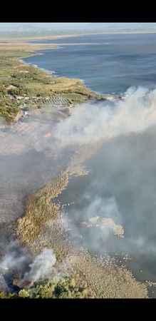 Aydın'da yangın kontrol altına alındı