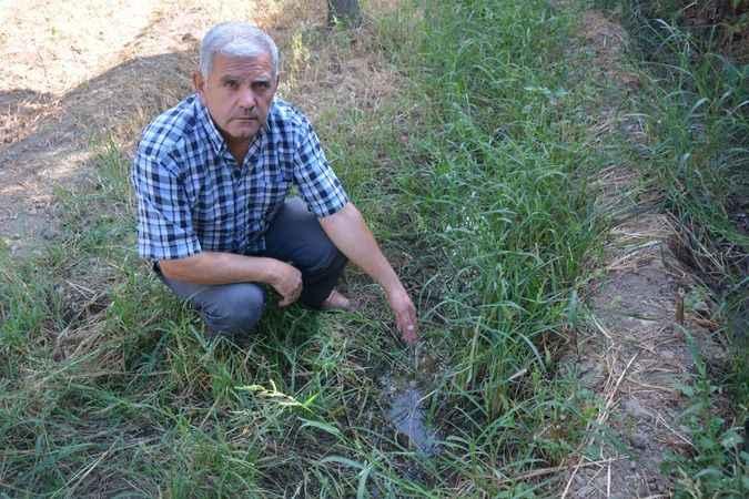Bahçeleri zarar gören üreticiler, incir işletmesinden şikayetçi oldu