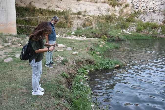 Karacasu'daki balık ölümleri araştırılıyor