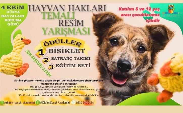Çocuklara hayvan sevgisi aşılamak için yarışma düzenlenecek