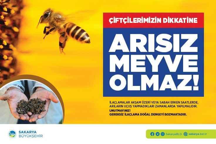 Doğru ilaçlama ile arı yaşamına destek sağlanır