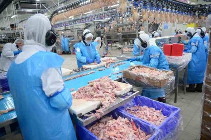Şenpiliç'te hedef Çin'e ihracat