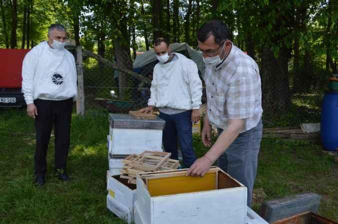 Sakarya'daki arıcılar bal sezonuna hazır