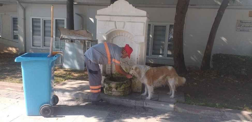 Temizlik işçisi halsiz köpeğe elleri ile su içirdi!