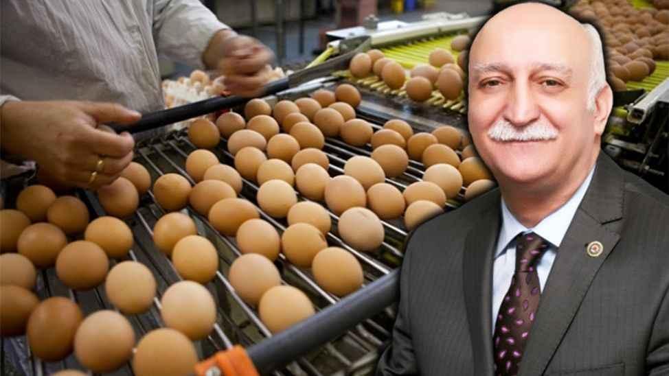 Türk yumurtası krizde: 'Yeni pazarlara ihtiyaç var'