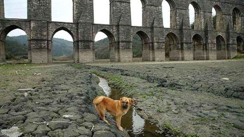 Su kaynaklarını sünger gibi emen İstanbul'un Melen barajı ümidi