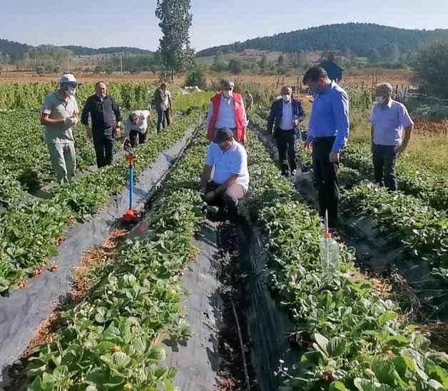 Vali Kaldırım'dan 'Çilek' paylaşımı