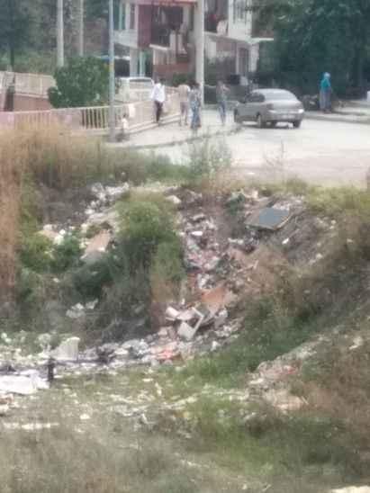 Sapanca'da vatandaşların çöp şikayeti…