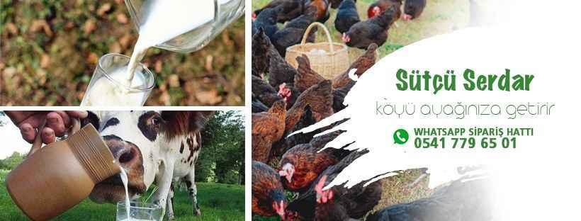 Doğal süt ve köy ürünleri Sütçü Serdar ile kapınızda
