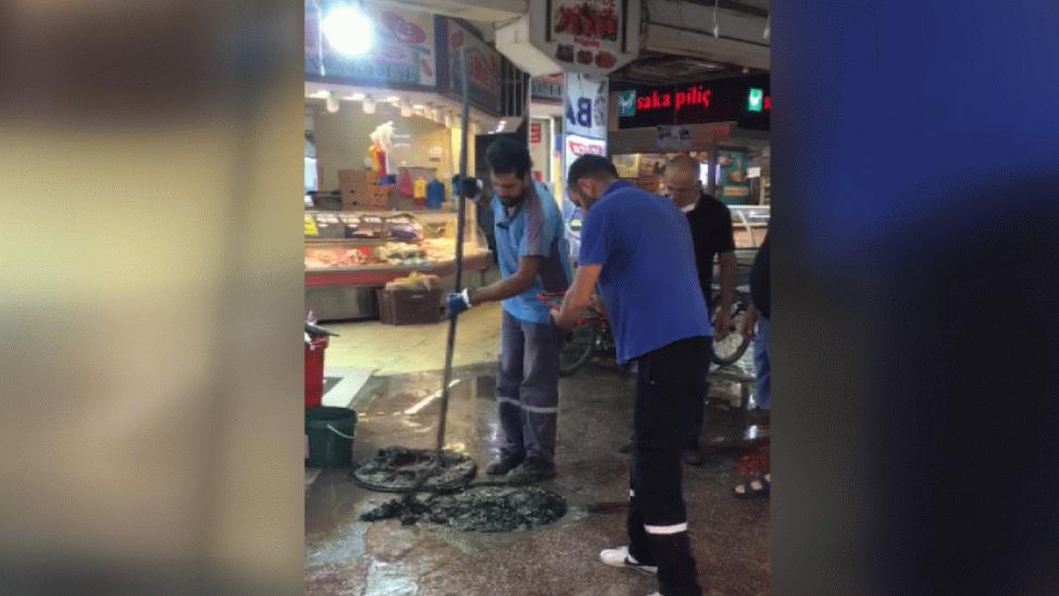Katlı Pazar'da balıkçıların rögar isyanı!