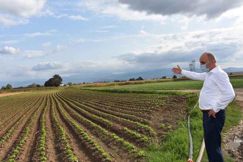 Fevzi Kılıç Erenler'deki tarım arazilerini gezdi
