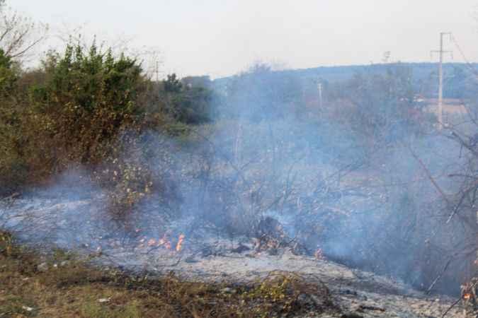 Ferizli'de otluk alanda çıkan yangın söndürüldü