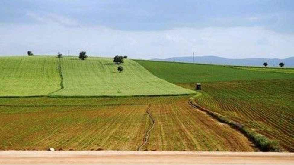 Karasu'da 17 dönümlük arazi kiralanacak
