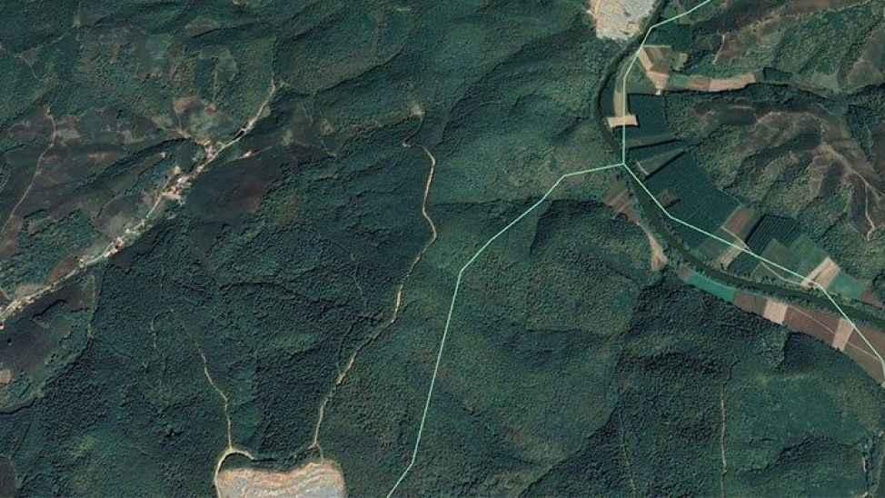 Bakanlık'tan izin çıktı: Bin 500 ağacı kesebilirsiniz!
