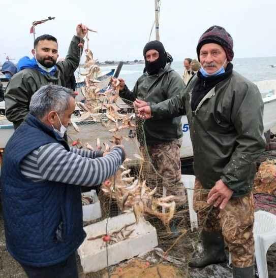 Karasu'da denizden barbun fışkırdı