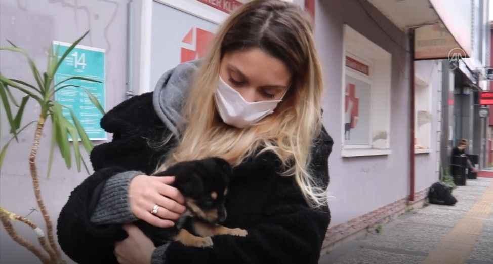 Yaralı bulunan yavru köpek tedavi edilerek sahiplendirildi