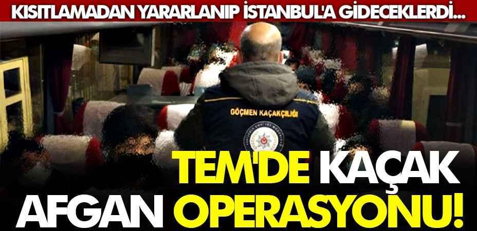 Kısıtlamadan yararlanıp İstanbul'a gideceklerdi... TEM'de kaçak Afgan operasyonu!